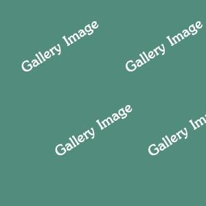 galleryImage3