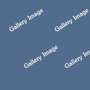 galleryImage4